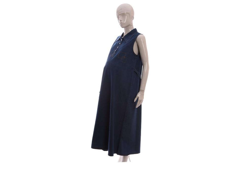 سارافون جین بلند بارداری